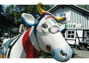 Westfelds einmalige Kuh